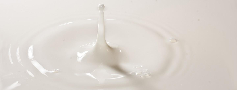 Фестивал на киселото мляко