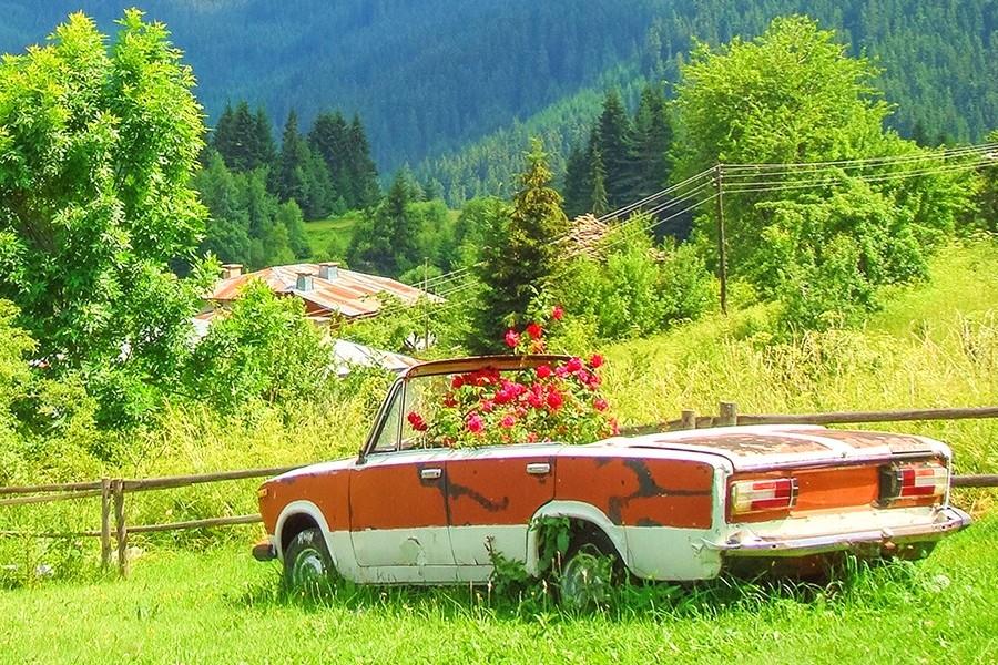 Summer in Rhodopes